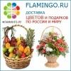 Фламинго.ру отзывы