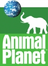Animal Planet отзывы