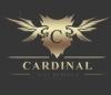 Интернет-магазин dvr-cardinal отзывы