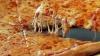 Xxl-pizza отзывы