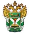 Российская Таможенная Академия отзывы