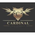 Интернет-магазин dvr-cardinal