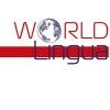 Lingua World - языковый центр отзывы