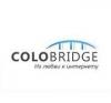 Хостинг-провайдер Colobrigde.net отзывы