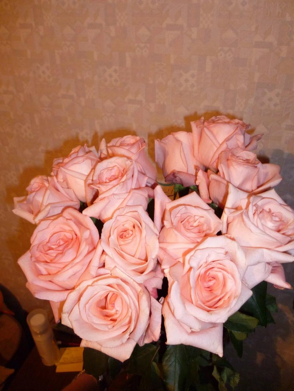 Фото подаренных цветов