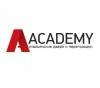 Двери Academy отзывы