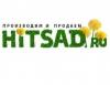 Hitsad.ru отзывы