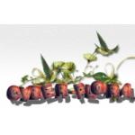 Служба доставки цветов Cyber-flora