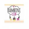 Франшиза Bambini Club отзывы