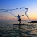 Рыболовная снасть FindFish отзывы