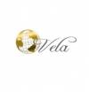 Студия веб дизайна Vela отзывы