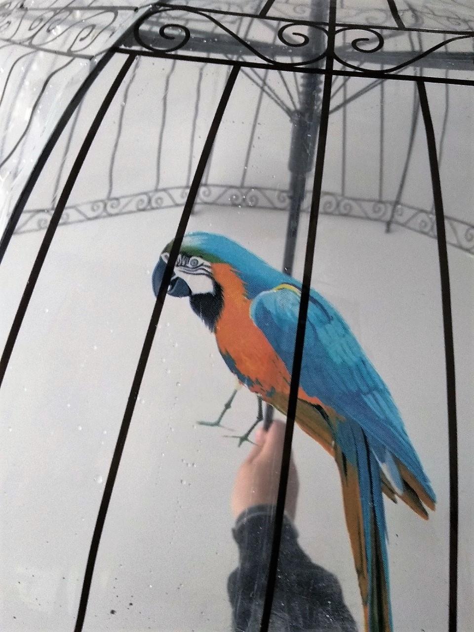 """Зонт-трость """"райская птица"""" от Leomax - Подарок для ребенка"""