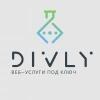 Divly.ru отзывы