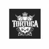 Тату-салон Tortuga отзывы