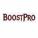 boostpro.ru сервис игровых услуг отзывы