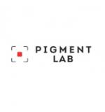 Pigment Lab – профессиональная студия татуажа и татуировки отзывы