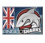 Тренинговая школа «Anglosharks» отзывы