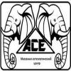 Массажно-остеопатический центр «Асе» отзывы