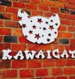 Курсы парикмахеров KAWAICAT отзывы