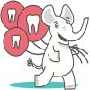 Стоматологическая клиника Белый Слон отзывы