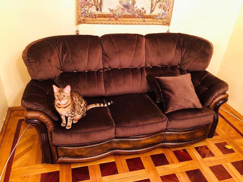 Ясная поляна - перетяжка мебели в Москве - Мебельная мастерская стул .ру